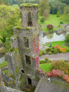 Blarney Castle Birds Eye View Ireland