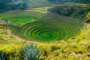 Sacred Peru - Moray Terraces