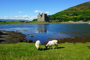 Tour the Isle of Arran - Scotland Sacred Sites Tour | Sacred Mystical Journeys