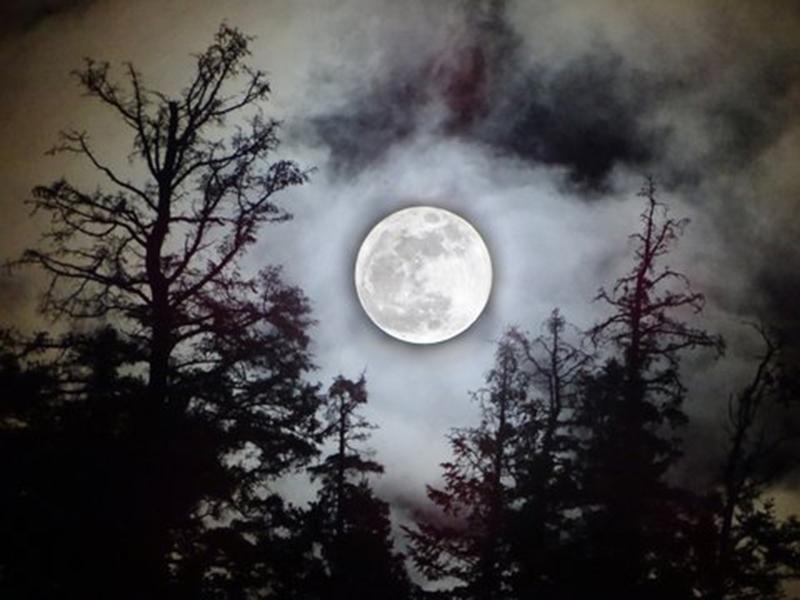 January Full Moon 2018 - Alexis Dillon | Sacred Mystical Journeys