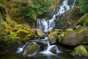 Killarney National Park - Joan Clark's Mystical Pilgrimage to Ireland
