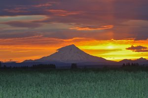 Mount Shasta at Sunset - Mount Shasta Spiritual Retreat | Sacred Mystical Journeys